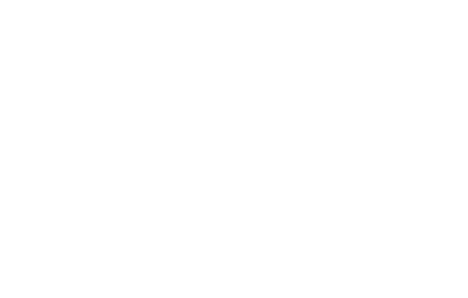 Bird | Photography